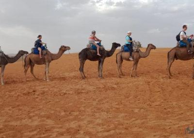4x4 marrakech excursions63